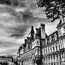 Paris in black and white  by Andrea Rapisarda