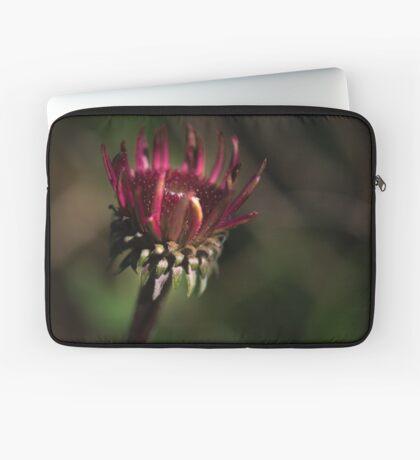 Echinacea Daybreak Laptop Sleeve