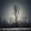 Foggy Day, Kansas City, Missouri by Robert Baker