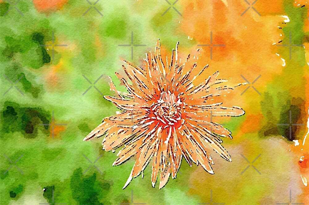 Orange in the Flower by Collette B. Rogers