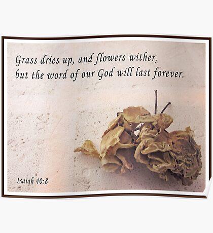Isaiah 40:8 Poster