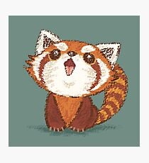 Red panda happy Photographic Print