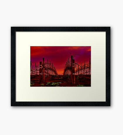 """Winter In The Vines"" Framed Print"
