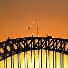 Sunset Over Sydney Harbor Bridge by Alex Preiss