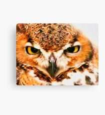 Owl Be Seeing You Canvas Print