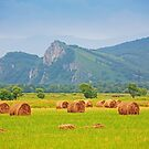 Haystack by christinaree