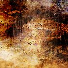 Flurry by Anne  McGinn