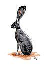 Jack Rabbit by ria gilham