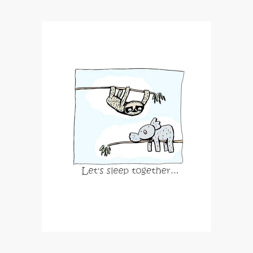 Koala and Sloth - Sleep Together Photographic Print