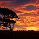 Mt Mee Sunrise by David de Groot