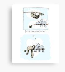 Koala and Sloth - Sleeping Together Cartoon Canvas Print