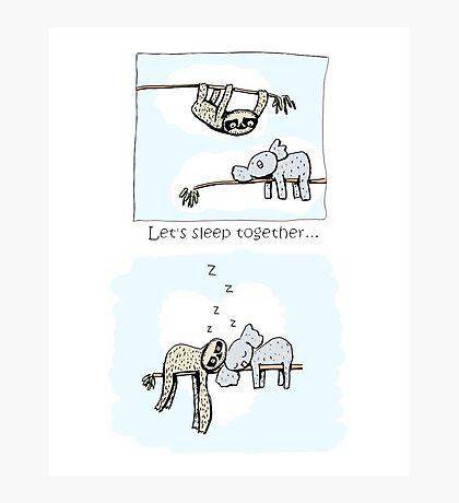 Koala and Sloth - Sleeping Together Cartoon Photographic Print