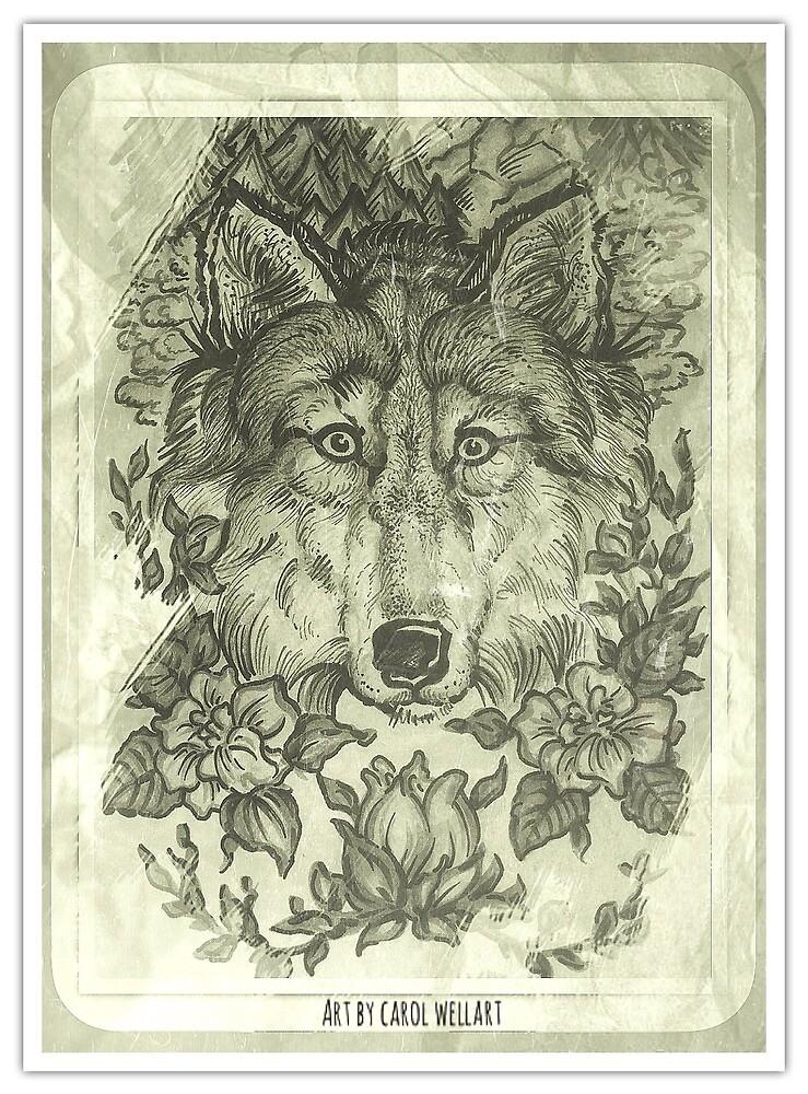 The wolf by Carolwellart