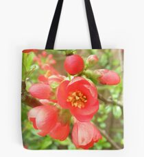 Japanese Quince.. Tote Bag
