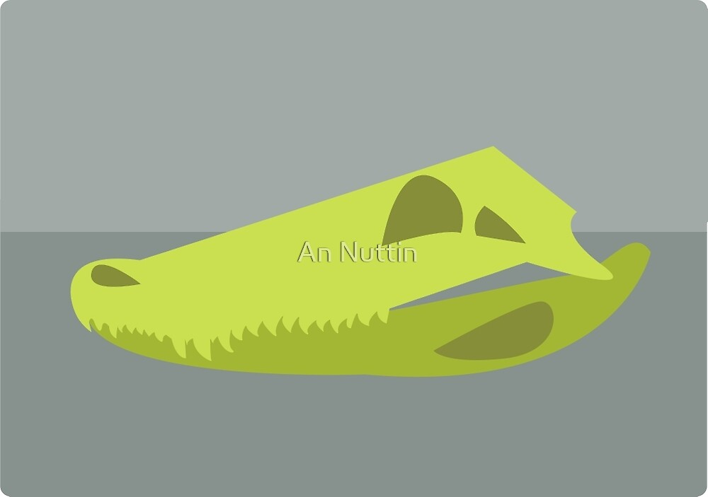 Alligator skull by An Nuttin