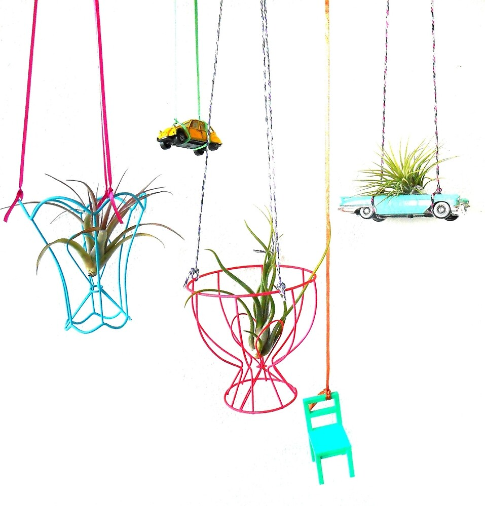 Happy Airplants  by hipaholic