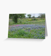 Texas Hill Country Greeting Card