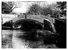 Brinklow Arm Bridge, North Oxford canals by bywhacky