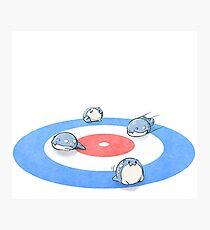 Lámina fotográfica Spheal de curling