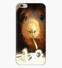 Super cute guinea pig eating iPhone Case