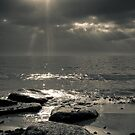 Mystic Crystal Revelation by Kofoed