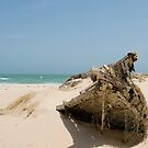 No Longer Needed - Disused fishing boat on beach by MattGrover