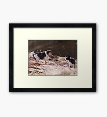 Shake It All About Framed Print