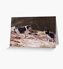 Shake It All About Greeting Card