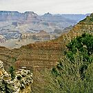 The Grand Canyon Series  - 6 To The East by Paul Gitto
