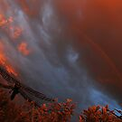 under the rainbow by twistwashere