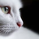 Deep in Thought 2 (just eyes) by Sally Green