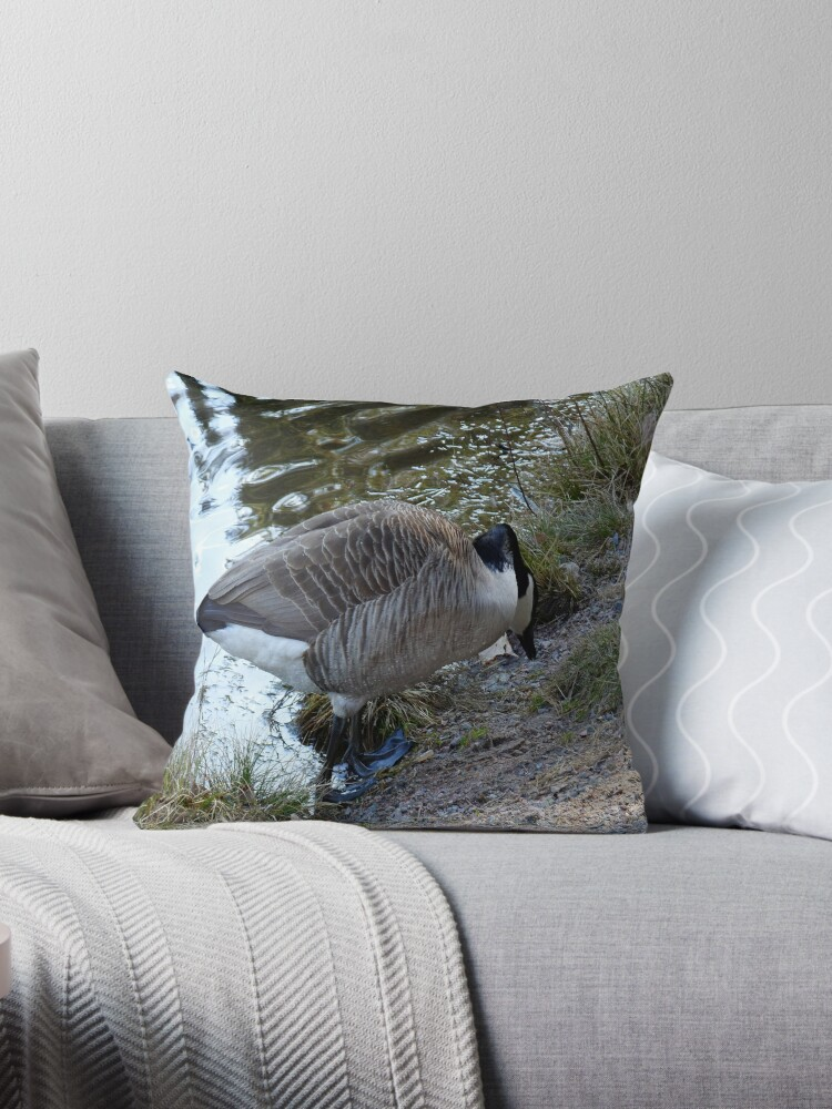 Water World - Mother Goose Grazing by HELUA