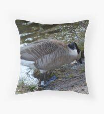 Water World - Mother Goose Grazing Throw Pillow