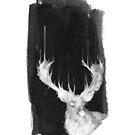 «Deer in Headlights» de croppedcharcoal