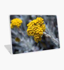Gozo: Silver Ragwort Laptop Skin