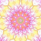 Blühen von kassiopeiia