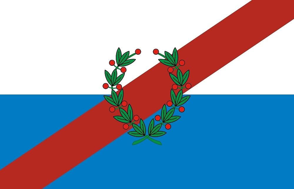 La Rioja Province Flag by abbeyz71