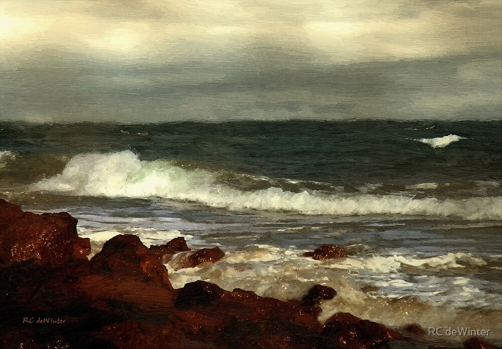 Morning After the Storm by RC deWinter