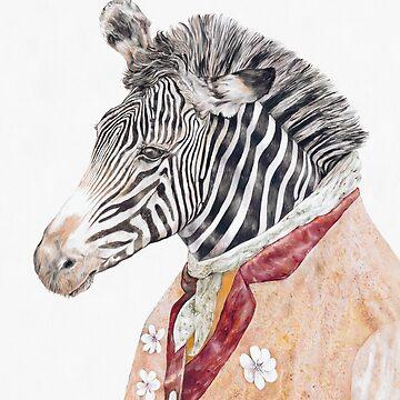 Zebra Cream by AnimalCrew
