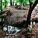 Gnomesville Panorama by Sheldon Pettit