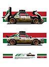 X24 Fiat (Fantasy Rally) Safari Ver. B by kanseigazou