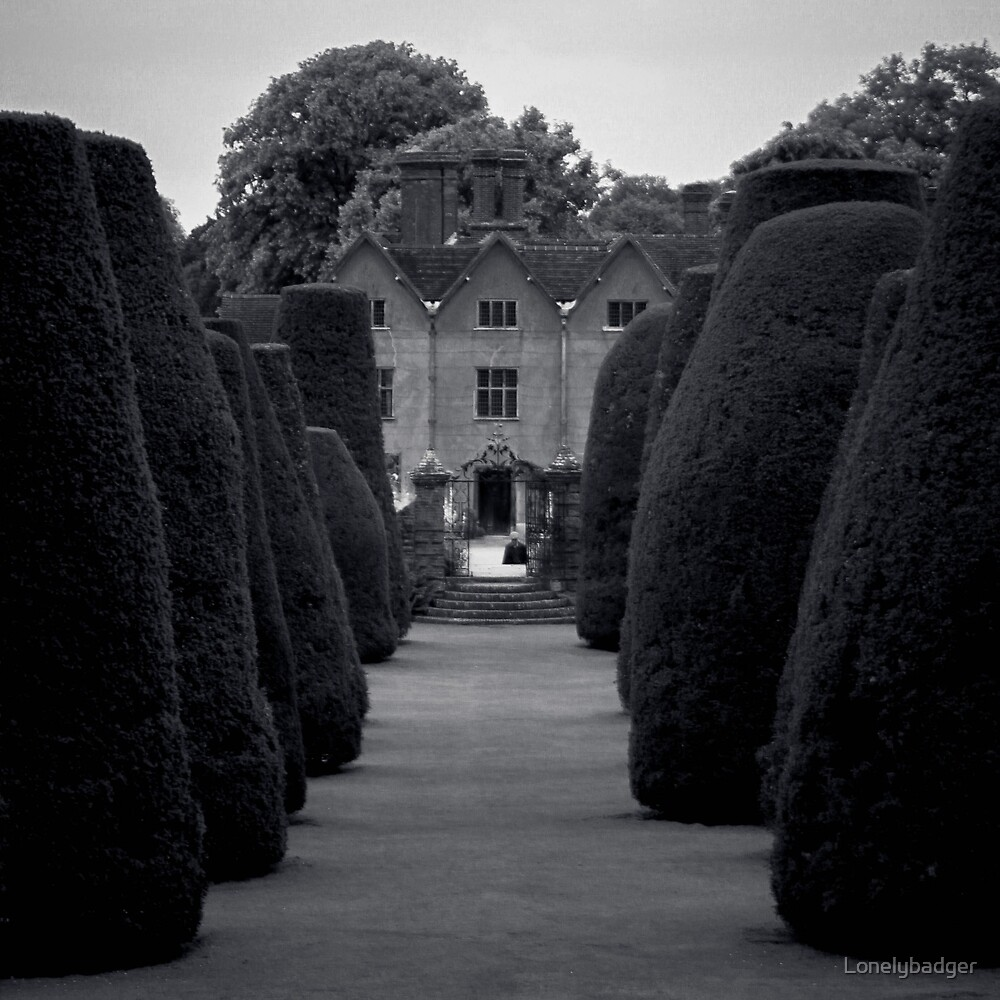 Packwood house yew garden by Lonelybadger