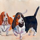 Basset hounds - Double trouble by doggyshop
