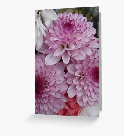 Three Purple Tipped Dahlias Greeting Card