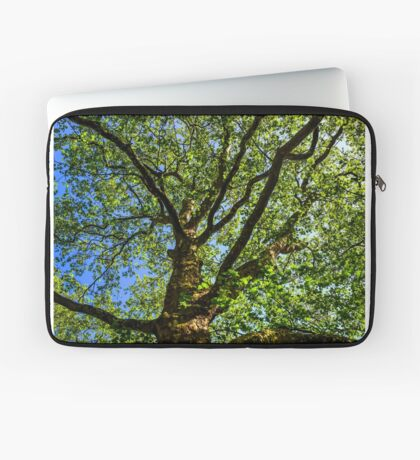 Royal Tree Laptop Sleeve