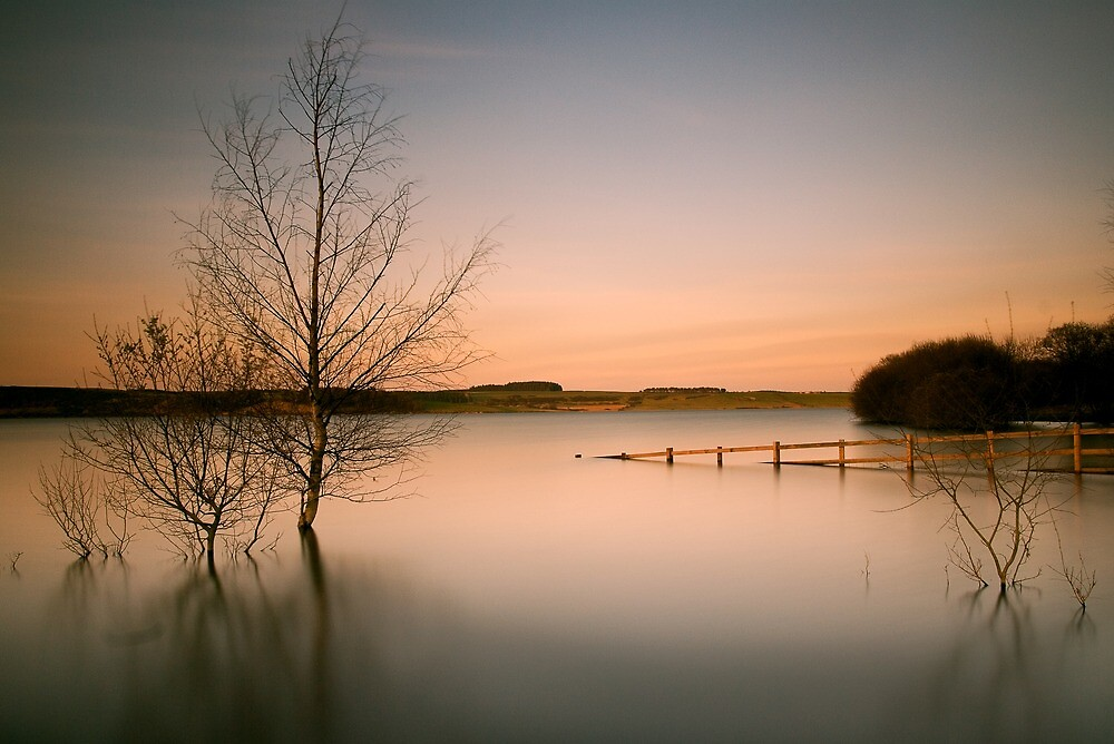 Tranquil by james  thow