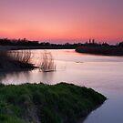 Volcanic Ash Affected Sunset over the River Parrett by kernuak