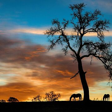Beautiful Country Side with Oak Tree and Horses, Southwestern Colors Silhouettes by LazyL
