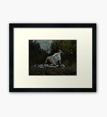 The Provider Framed Print