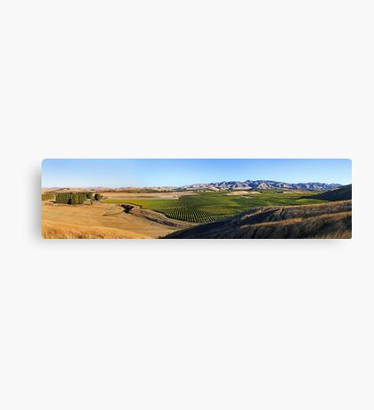 Awatere Valley Canvas Print
